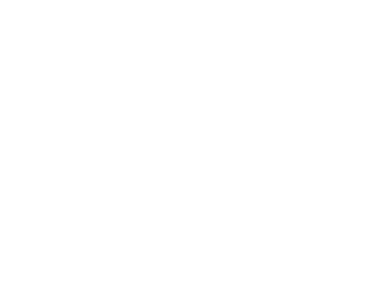 webfleetsolutions_icons